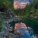 Cowichan River Paradise by Thomas Dawson