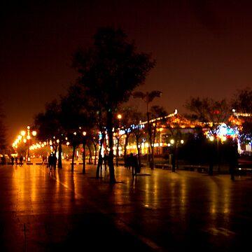 Night in Xi'an by readora