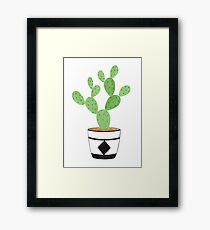 Cactus - 2 Framed Print