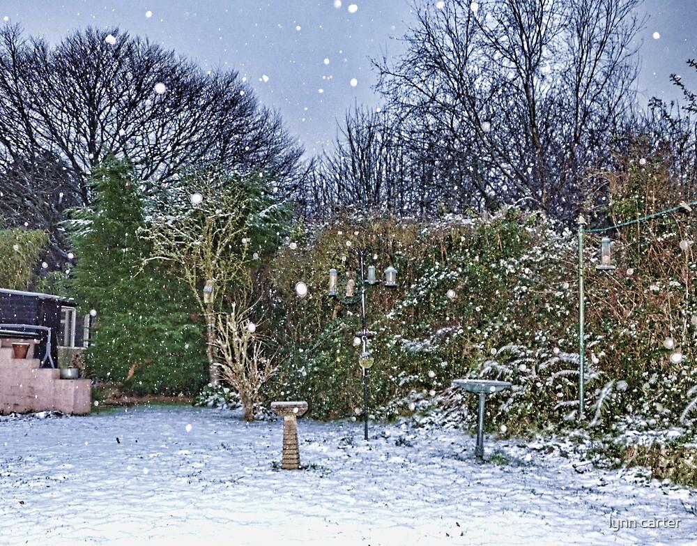 Snowy Garden In Uplyme by lynn carter