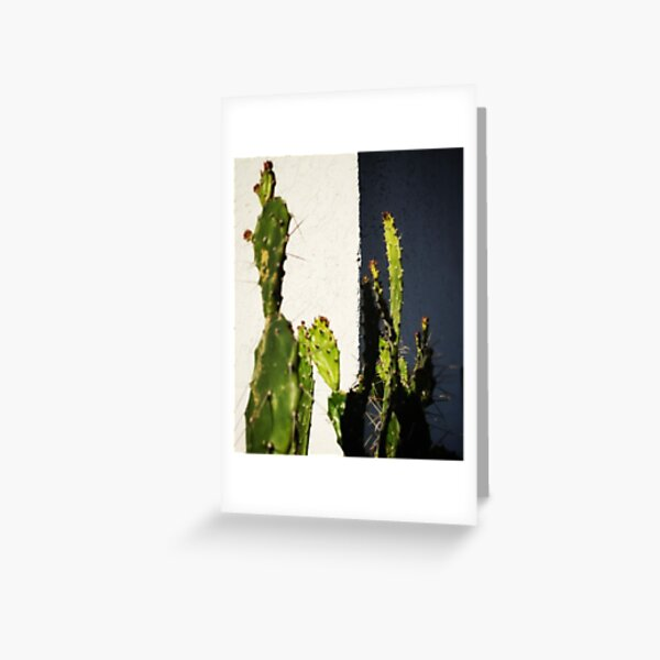 Cactus in front of house corner Greeting Card