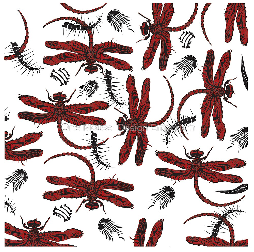 Dragonfly Fossils Wall Art by One Mouse  Design Emporium
