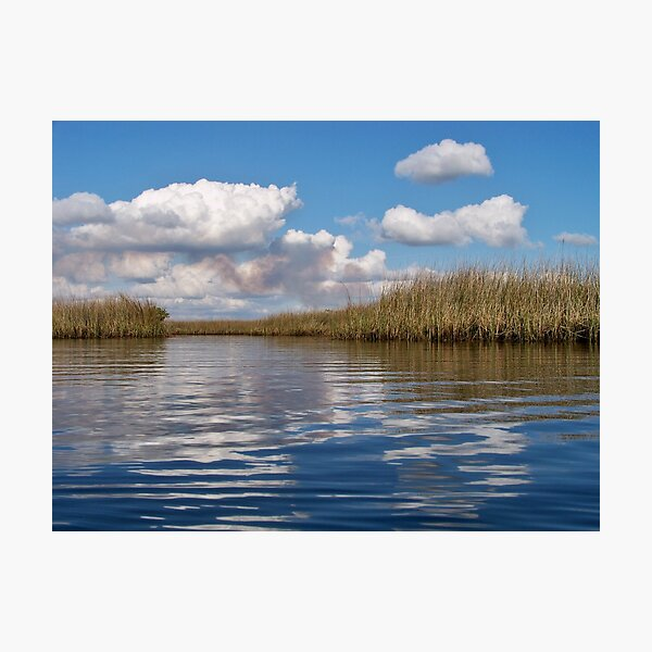 Sawgrass Water and clouds Photographic Print