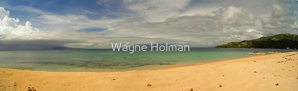 View from Aguirangan Island by Wayne Holman