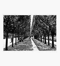 Palais Royal Photographic Print