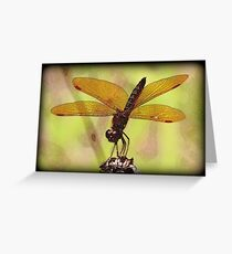 Texture Fly Greeting Card