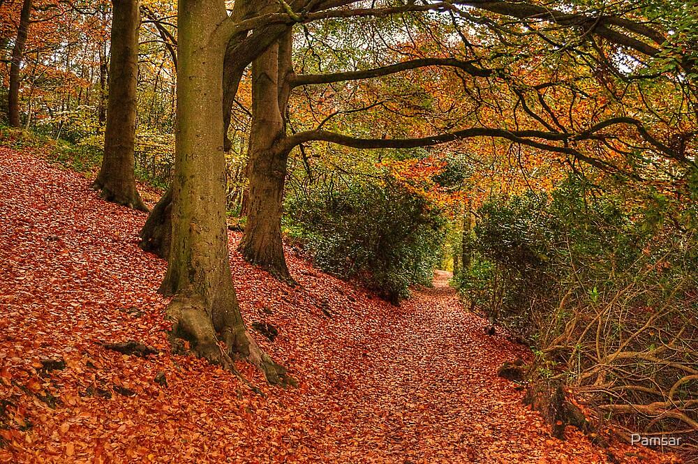 Autumn Walk by Pamsar