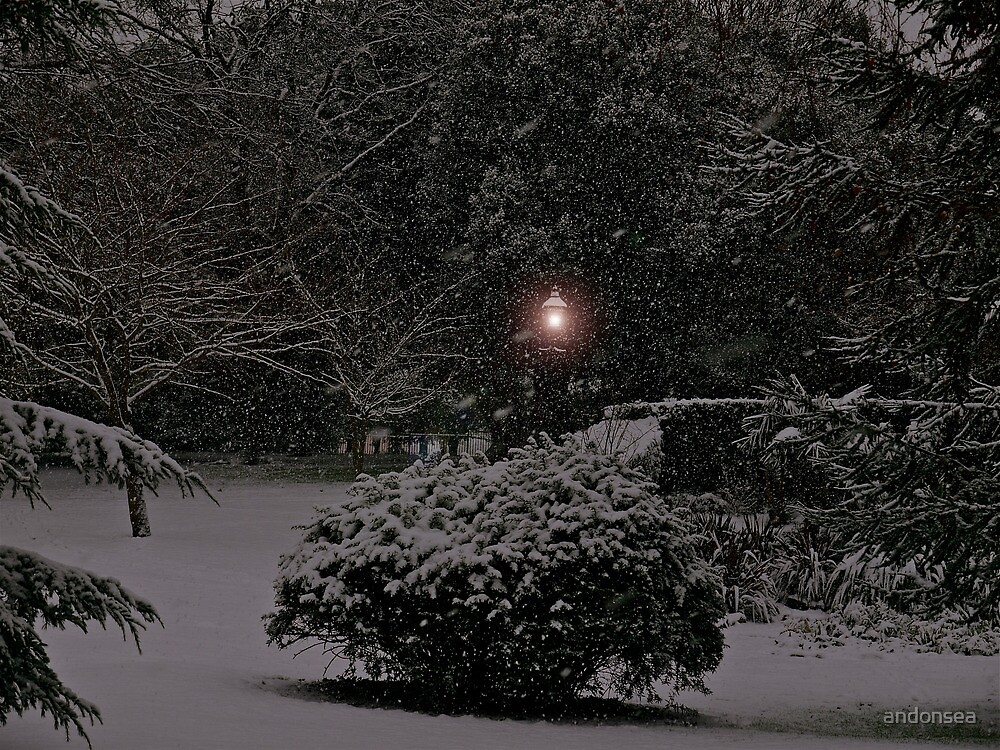 Is This Narnia? by andonsea