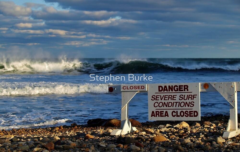 Too Dangerous by Stephen Burke