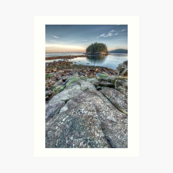 Bennett Bay Point South Art Print