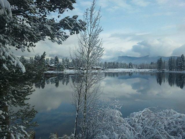 Winter Wonderland by Shane Hutton