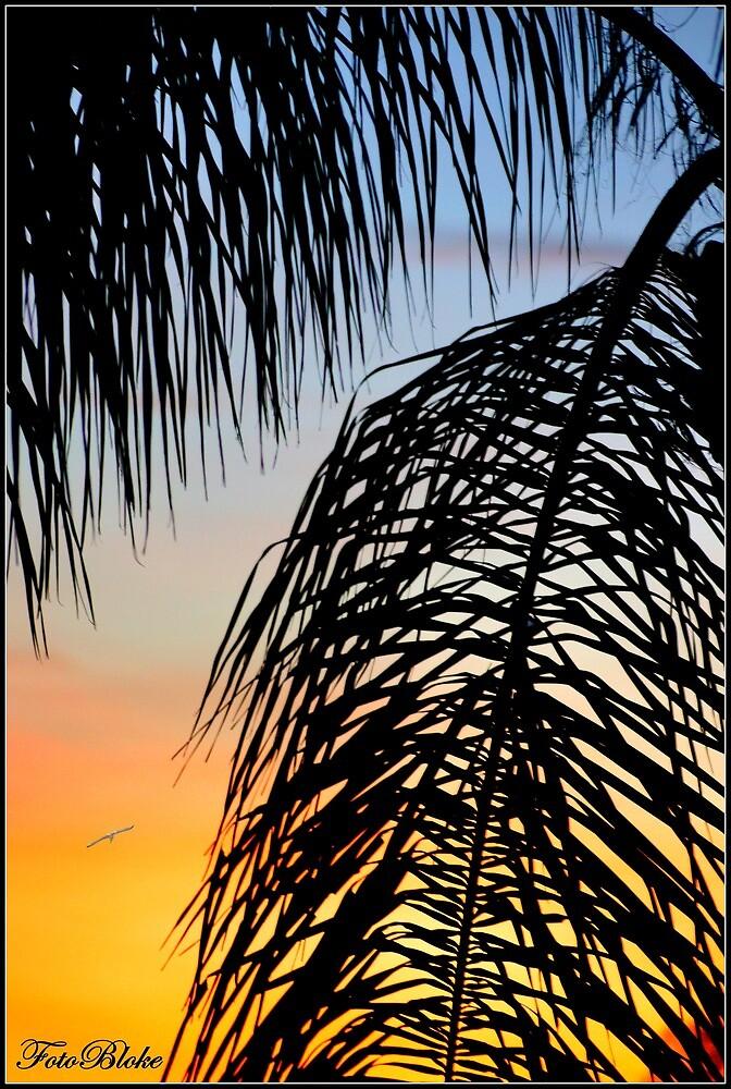 ontward 'til evening.. by FotoBloke