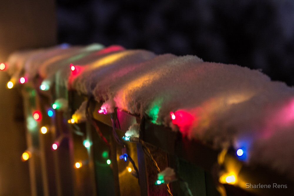 Snow-Covered Lights by Sharlene Rens