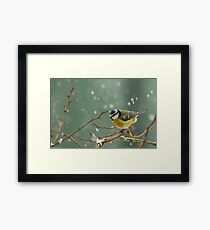 snowstorm survivor Framed Print