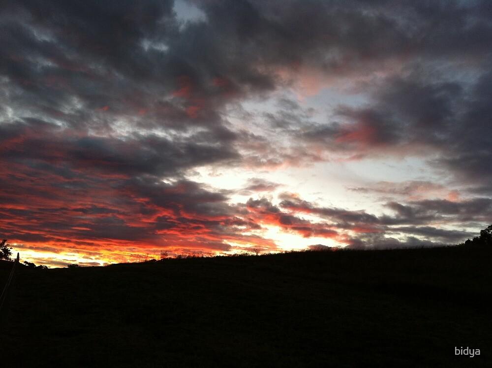 Sunset Late by bidya