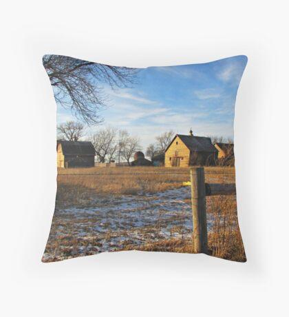 Down on Junior's Farm Throw Pillow
