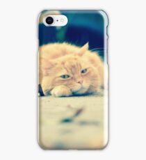Gracie iPhone Case/Skin