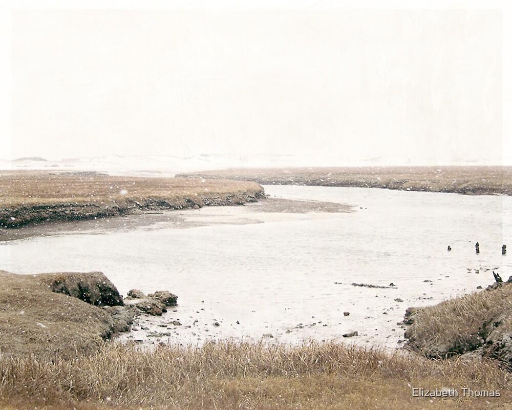 Town Neck Beach, Sandwich, Cape Cod by Elizabeth Thomas
