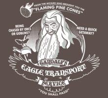 Gandalf's Eagle Transport Service  | Unisex T-Shirt