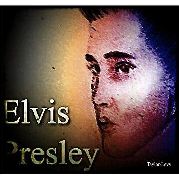 Elvis Presley poster by babybadger