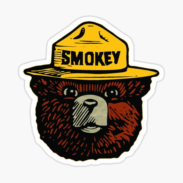 only you can prevent wild fires  Sticker