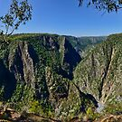 Wollomombi Gorge revisited by Chris  Randall