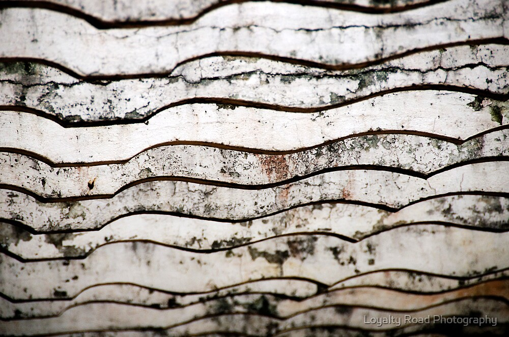 Wood Detail by A. Duncan
