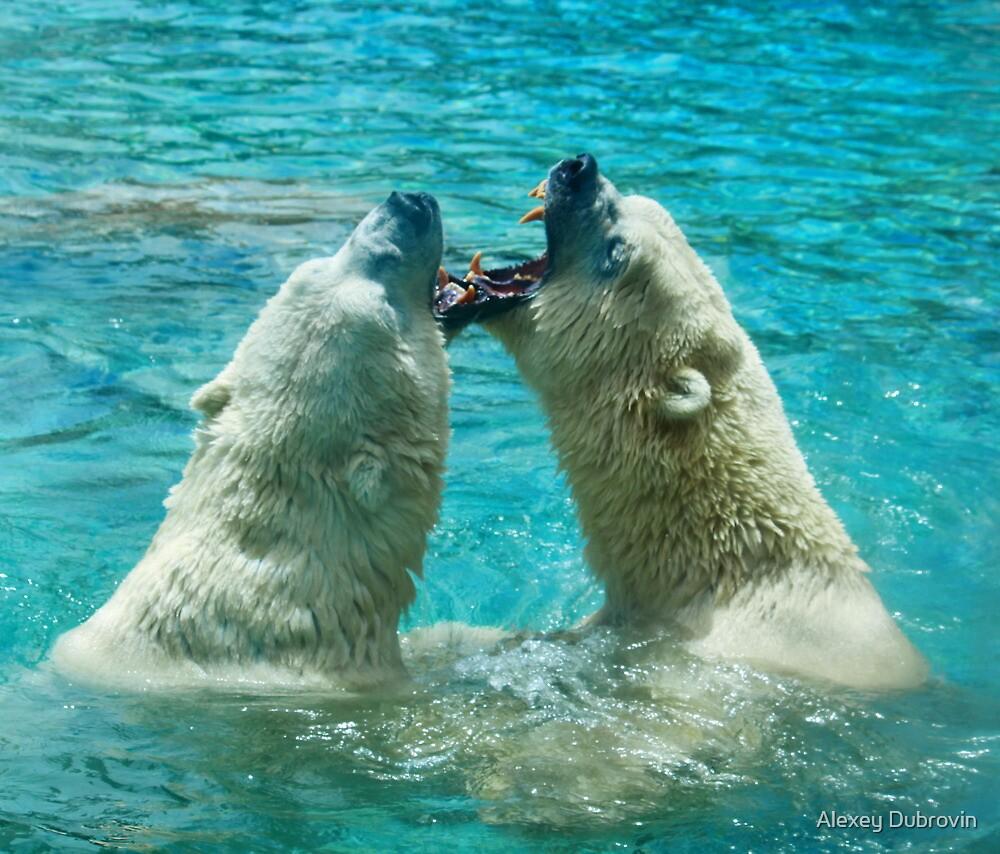 Polar bear play by Alexey Dubrovin