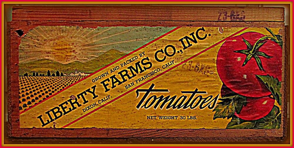 Tomatoes by Gary  Oertel
