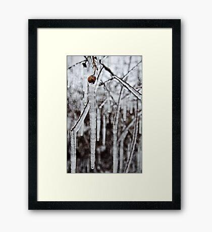 Brr Framed Print