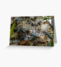 Even the flowers are bugged! Greeting Card