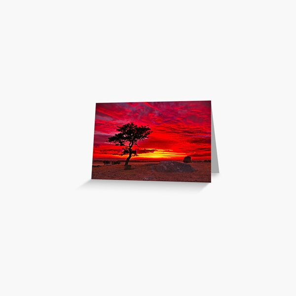 """""""The Sky Is All Ablaze"""" Greeting Card"""