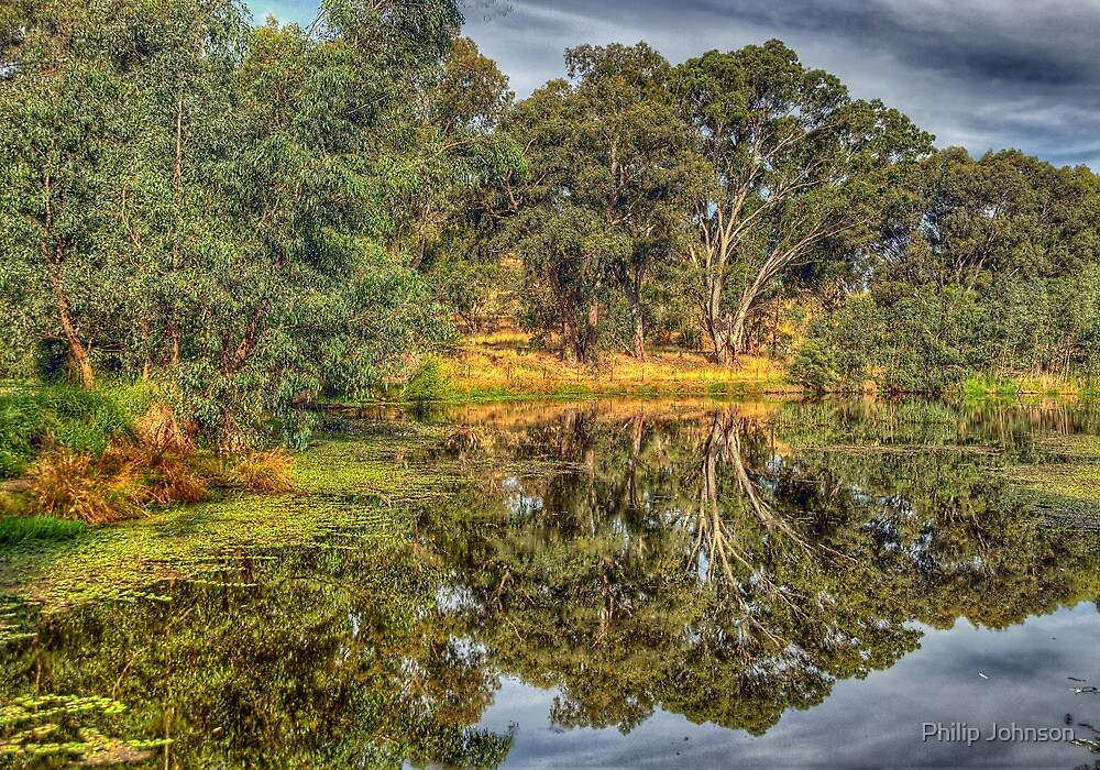 And His Ghost May Be Heard - Wonga Wetlands , Albury by Philip Johnson