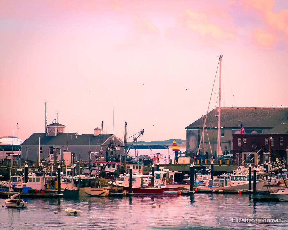 Provincetown Harbor, Cape Cod, Massachusetts by Elizabeth Thomas