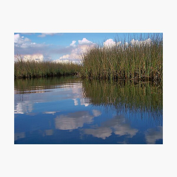 Sawgrass Water Sky and clouds 6 Photographic Print