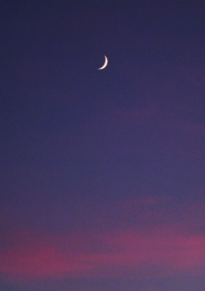 Sunset Moon by colettelydon