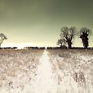 Can't beat a walk in the snow by Richard Durrant