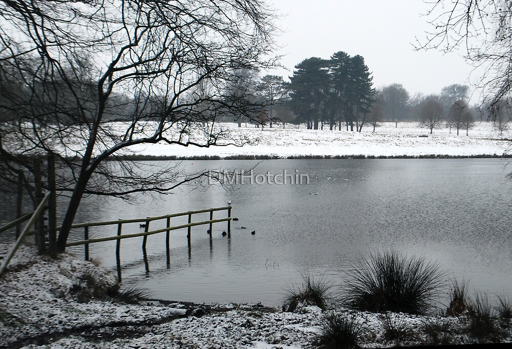 Tatton in the Snow by DMHotchin