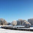 Barnham Broom Winter Wonderland by Mark Bunning