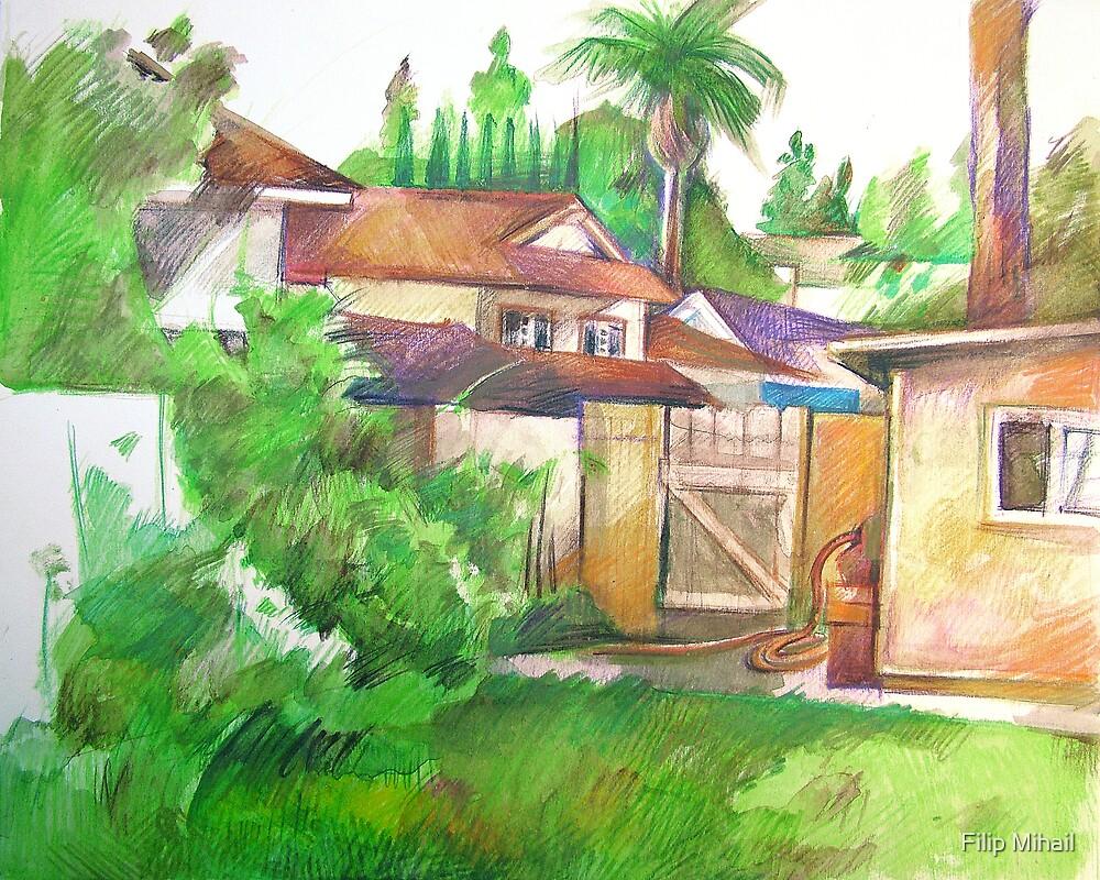 Backyard in Fullerton by Filip Mihail
