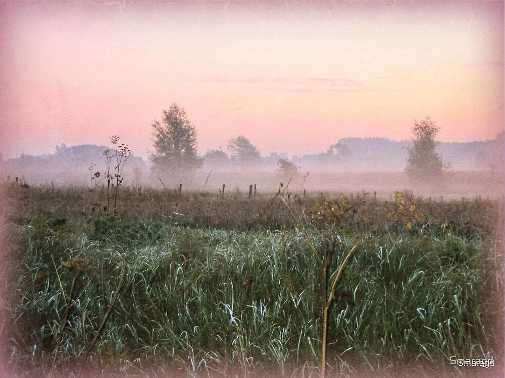 Misty Morning by Smaragd