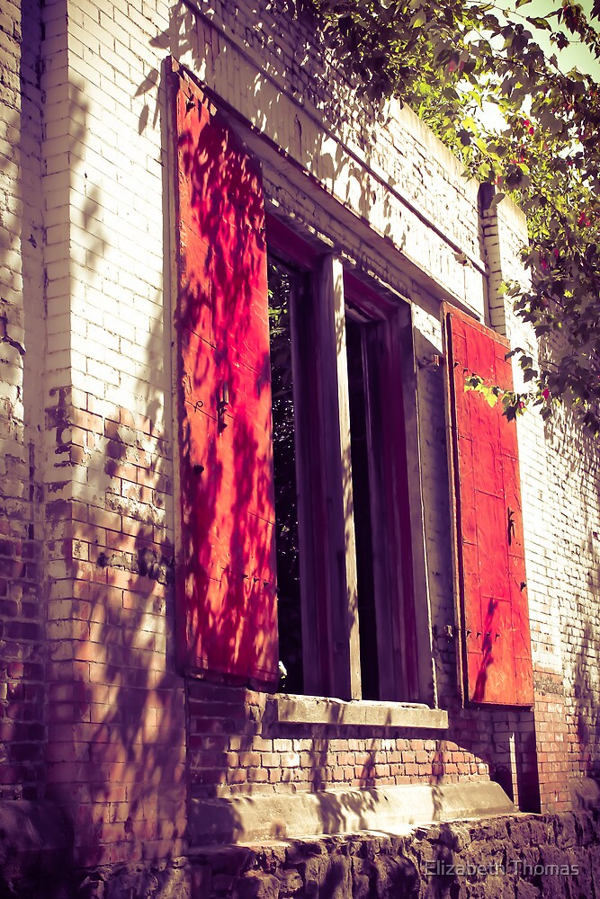Red Shuttered Derelict Building by Elizabeth Thomas
