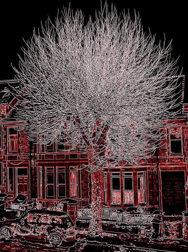 Tree in Neon by John Tidball