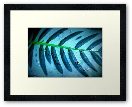 Leaf by Thaddeus Zajdowicz