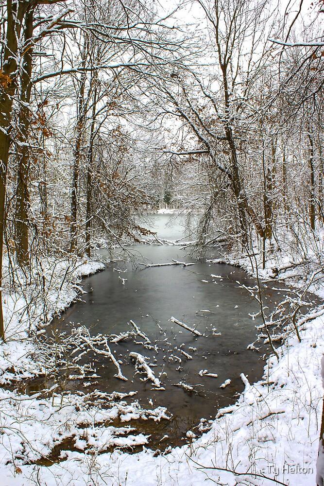 Frozen by Ty Helton