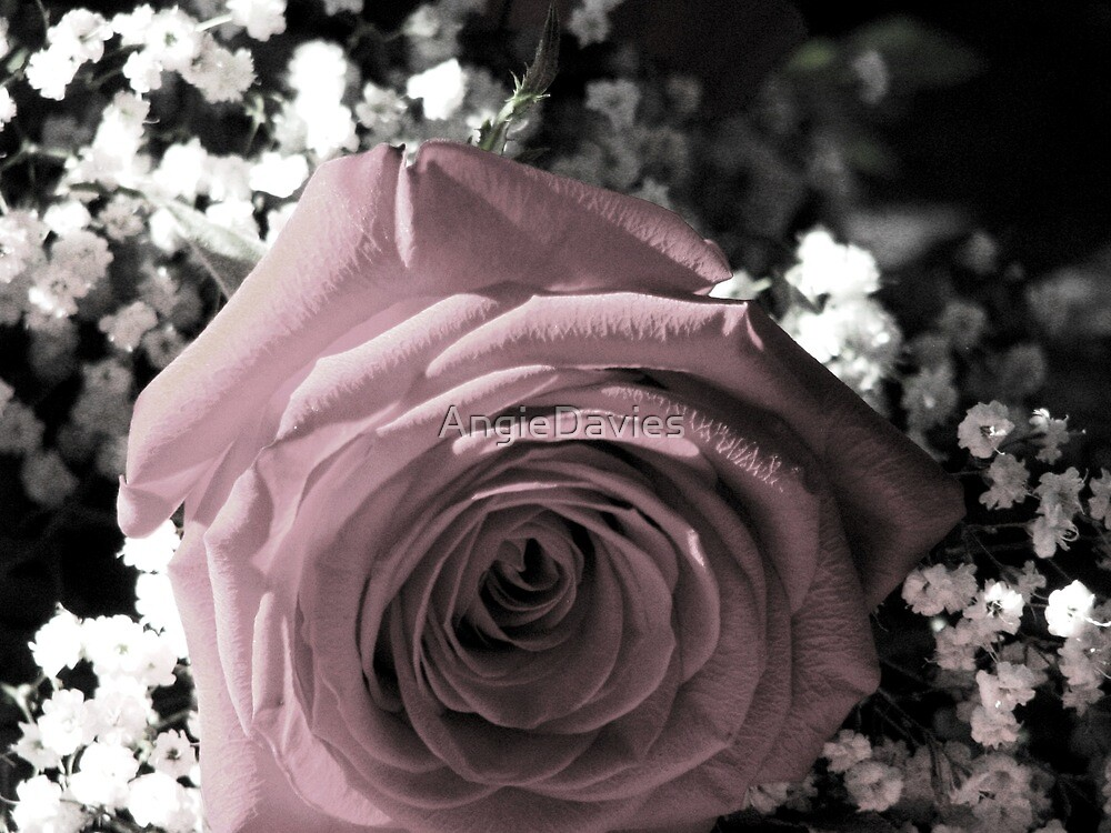 Just For You by AngieDavies
