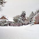 Winter Wonderland by Clive