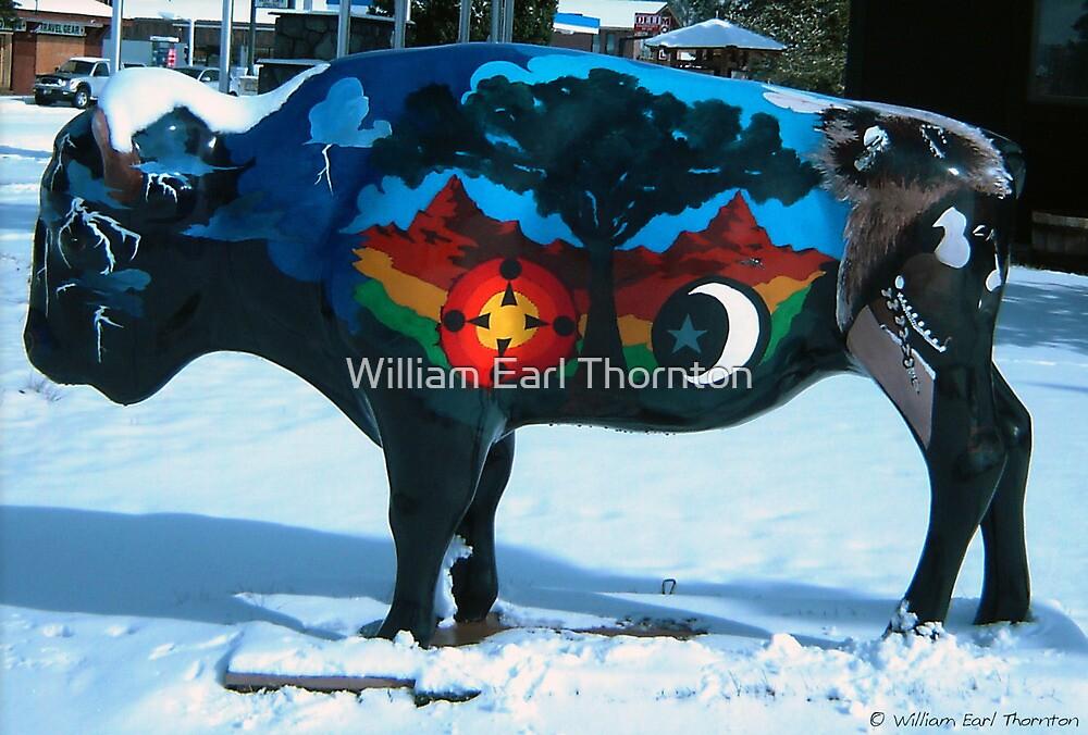 Montana by William Earl Thornton