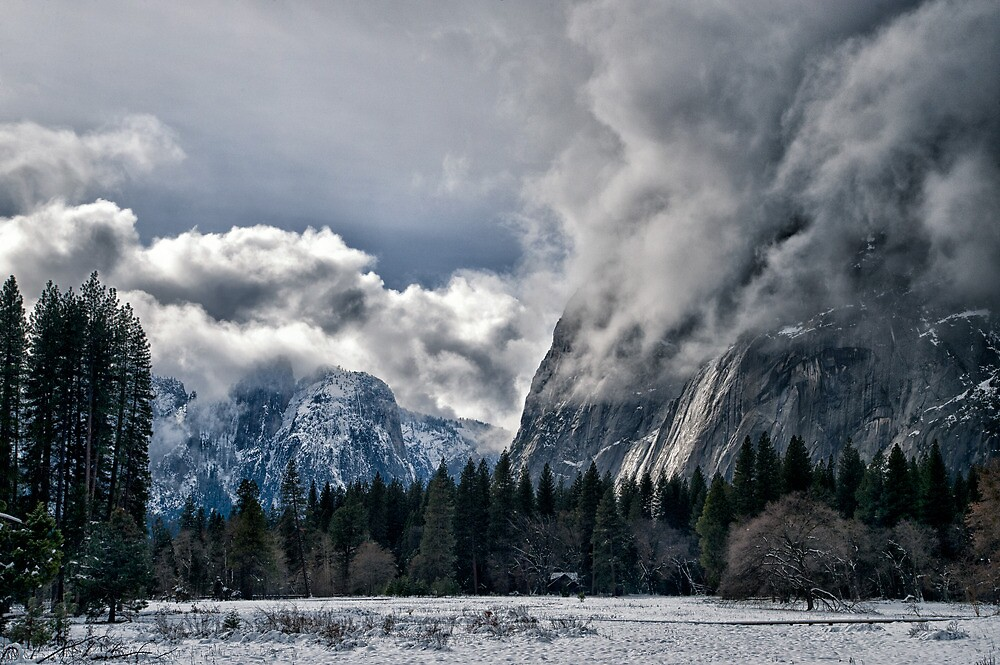 A Snowy Day in Yosemite by Cat Connor