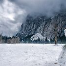 Snowmen of Yosemite by Cat Connor